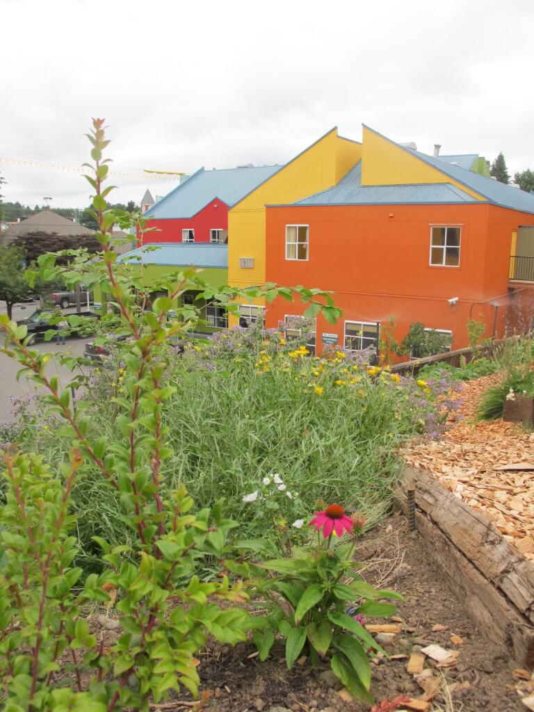 After: A beautiful food forest integrated with buildings on an urban site