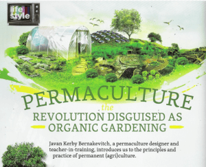 Permaculture - Revolution Article