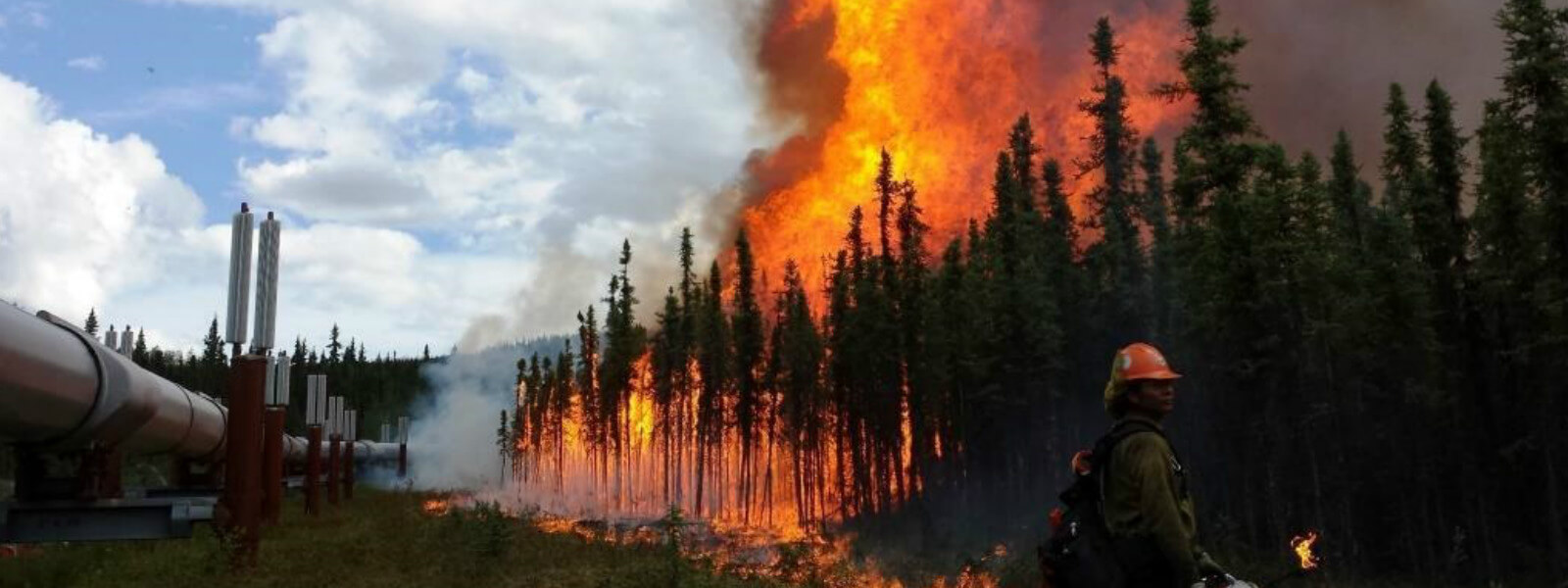 The Aggie Creek Fire near Fairbanks, Alaska Credit: Philip Spor